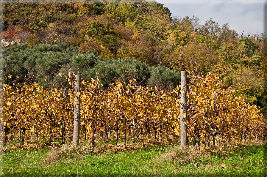 Sfondi per desktop paesaggi autunnali sfondo 034 for Foto per desktop gratis autunno
