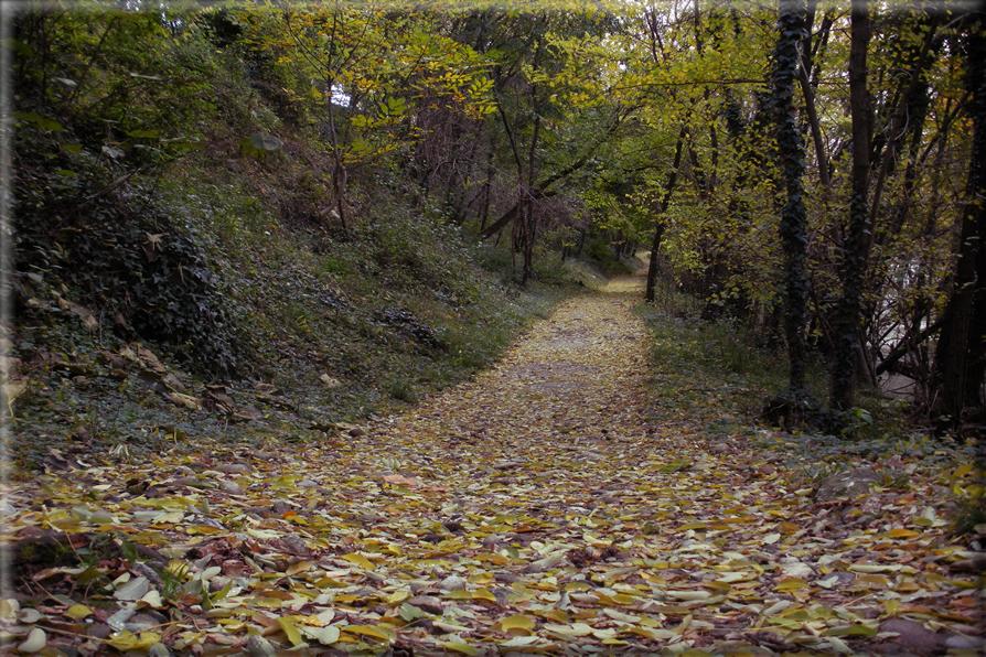 Sfondi per desktop paesaggi autunnali sfondo 010 for Foto per desktop gratis autunno