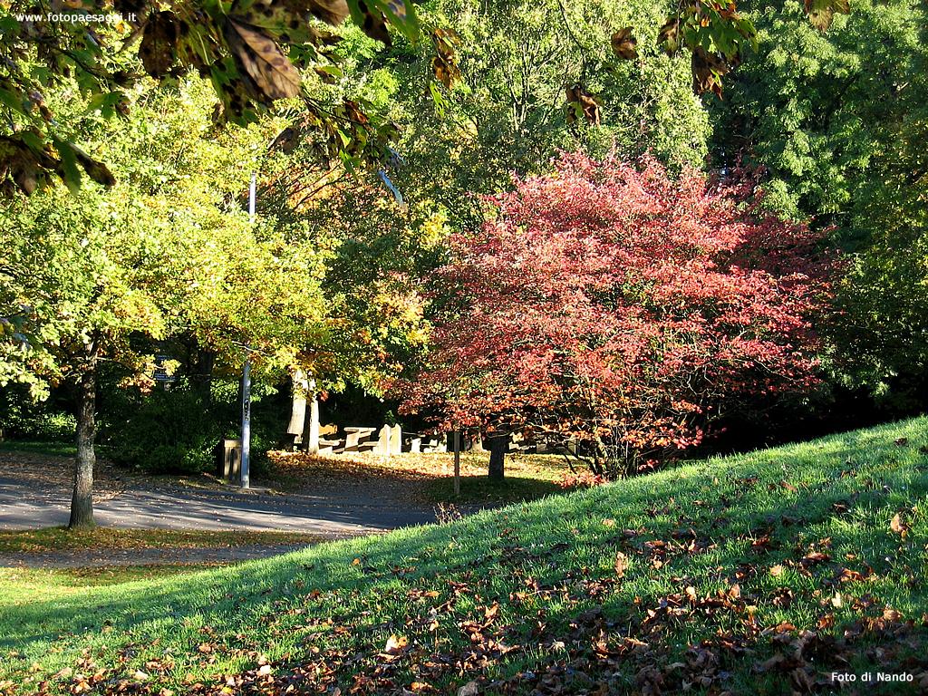 Pin pin sfondi autunno cielo rami foglie macro ad ampio hd for Sfondi autunno hd