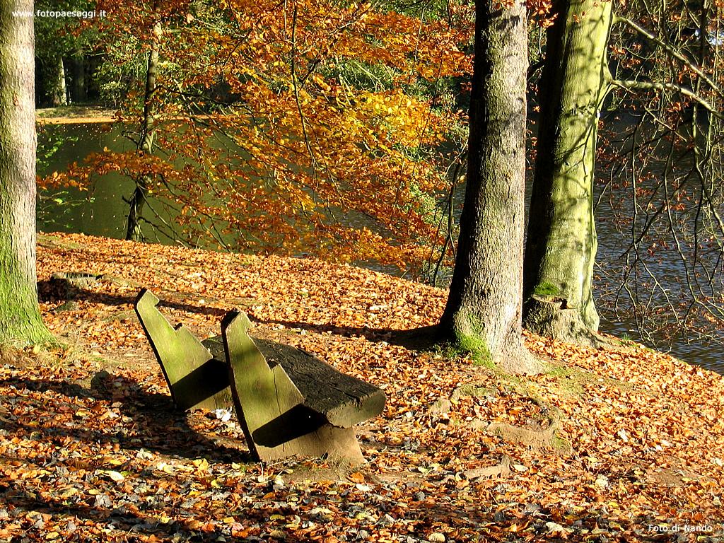 Sfondi per desktop paesaggi autunnali sfondo 008 for Sfondi desktop autunno