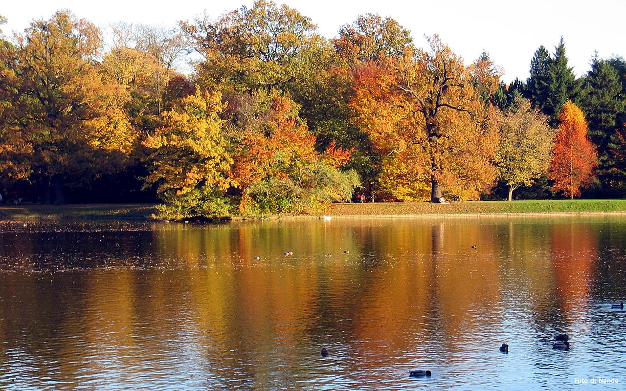 Sfondi per desktop paesaggi autunnali sfondo 031 for Sfondi autunno hd