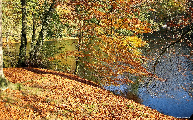 Sfondi per desktop paesaggi autunnali sfondo 009 for Sfondi desktop autunno